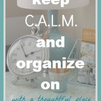 Keep C.A.L.M. and Organize On