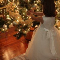 A Christmas Sneak Peek: Sparkly Tree