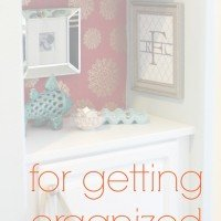 Top 10 Organizational Tips & Link Party