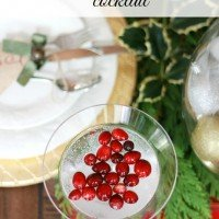Holiday Cocktail | Cranberry Ginger