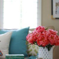 Friday Eye Candy | Colorful Blooms