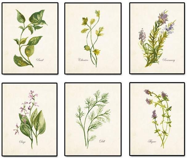 botanicaletsy