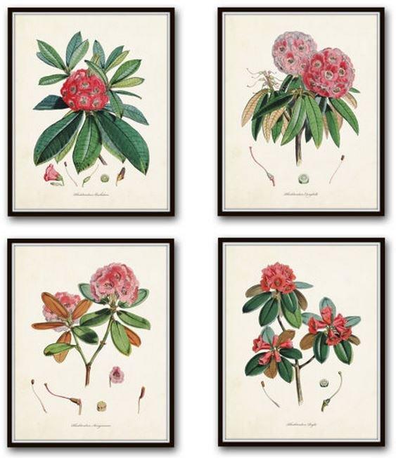botanicaletsy3