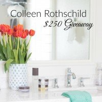 Giveaway from Colleen Rothschild