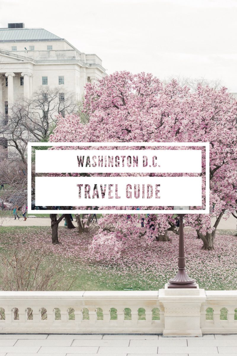 Washington D.C. Travel Guide - A Thoughtful Place