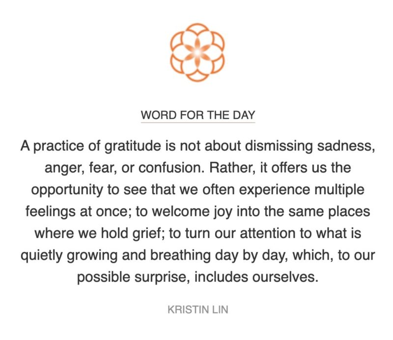 gratitude word for the day