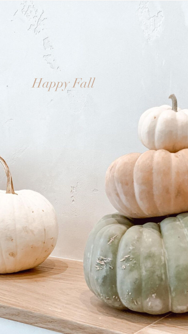 happy fall monday wrap up
